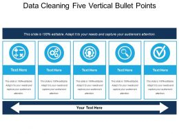 Data Cleaning Five Vertical Bullet Points