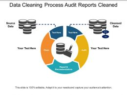 Data Cleaning Process Audit Reports Cleaned