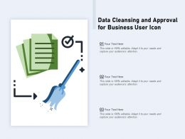 Data Cleansing And Approval For Business User Icon