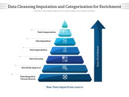 Data Cleansing Imputation And Categorization For Enrichment