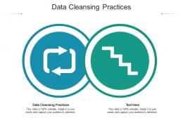 Data Cleansing Practices Ppt Powerpoint Presentation Ideas Format Ideas Cpb