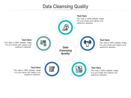 Data Cleansing Quality Ppt Powerpoint Presentation Professional Layout Cpb