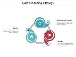 Data Cleansing Strategy Ppt Powerpoint Presentation File Graphic Images Cpb