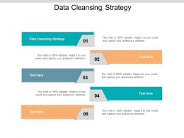 Data Cleansing Strategy Ppt Powerpoint Presentation Model Template Cpb