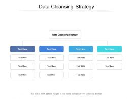 Data Cleansing Strategy Ppt Powerpoint Presentation Professional Good Cpb