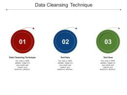 Data Cleansing Technique Ppt Powerpoint Presentation Infographic Template Professional Cpb