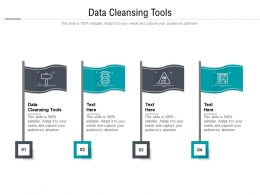 Data Cleansing Tools Ppt Powerpoint Presentation Pictures Skills Cpb