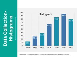 Data Collection Histograms Ppt Styles Infographic Template