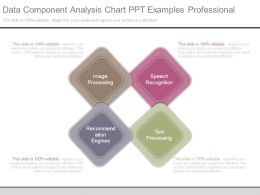 Data Component Analysis Chart Ppt Examples Professional