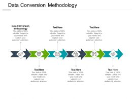 Data Conversion Methodology Ppt Powerpoint Presentation Inspiration Slide Portrait Cpb