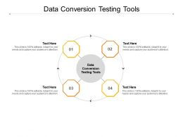 Data Conversion Testing Tools Ppt Powerpoint Presentation Gallery Cpb