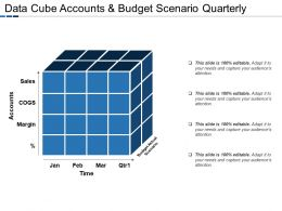 Data Cube Accounts And Budget Scenario Quarterly