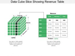 Data Cube Slice Showing Revenue Table