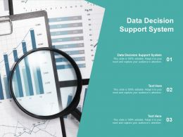 Data Decision Support System Ppt Powerpoint Presentation Model Smartart Cpb