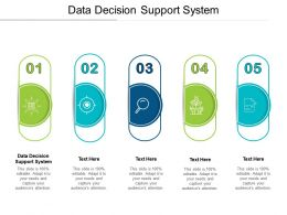 Data Decision Support System Ppt Powerpoint Presentation Visual Aids Layouts Cpb