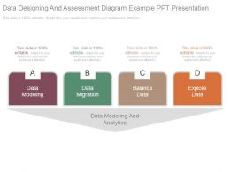 Data Designing And Assessment Diagram Example Ppt Presentation