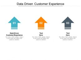 Data Driven Customer Experience Ppt Powerpoint Presentation Infographics Portrait Cpb