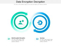 Data Encryption Decryption Ppt Powerpoint Presentation Ideas Maker Cpb