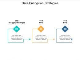 Data Encryption Strategies Ppt Powerpoint Presentation Outline Format Cpb
