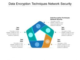 Data Encryption Techniques Network Security Ppt Powerpoint Presentation Gallery Example Cpb
