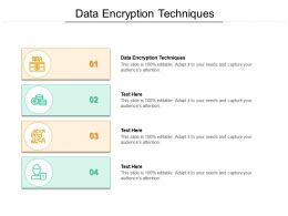 Data Encryption Techniques Ppt Powerpoint Presentation Professional Deck Cpb