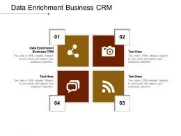 Data Enrichment Business Crm Ppt Powerpoint Presentation Infographics Slide Cpb