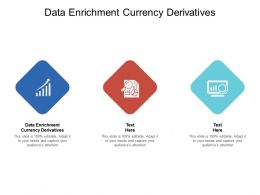 Data Enrichment Currency Derivatives Ppt Powerpoint Presentation Ideas Guide Cpb