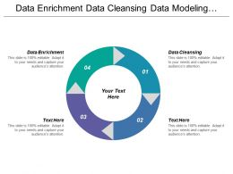 Data Enrichment Data Cleansing Data Modeling Finance Supporting Marketing