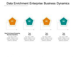 Data Enrichment Enterprise Business Dynamics Ppt Powerpoint Presentation File Slide Portrait Cpb