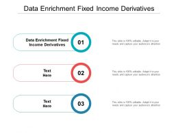 Data Enrichment Fixed Income Derivatives Ppt Powerpoint Presentation Gallery Professional Cpb