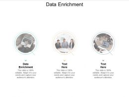Data Enrichment Ppt Powerpoint Presentation Infographic Template Example File Cpb