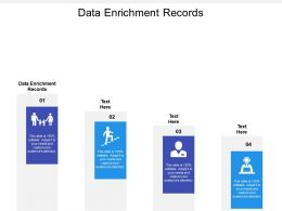 Data Enrichment Records Ppt Powerpoint Presentation Gallery Tips Cpb