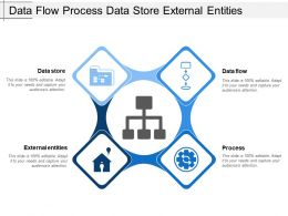 Data Flow Process Data Store External Entities