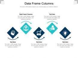 Data Frame Columns Ppt Powerpoint Presentation File Graphics Download Cpb