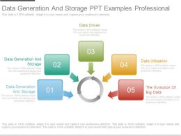 Data Generation And Storage Ppt Examples Professional