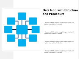 Data Icon With Structure And Procedure