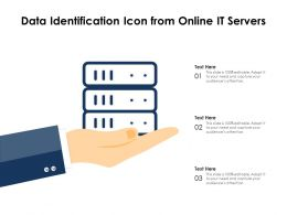 Data Identification Icon From Online IT Servers