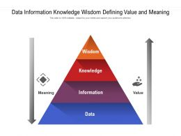 Data Information Knowledge Wisdom Defining Value And Meaning