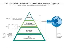 Data Information Knowledge Wisdom Pyramid Based On Factual Judgements