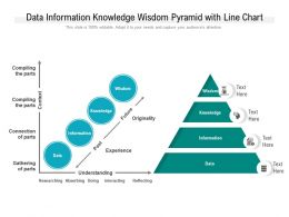 Data Information Knowledge Wisdom Pyramid With Line Chart