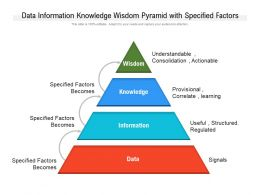 Data Information Knowledge Wisdom Pyramid With Specified Factors