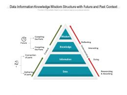 Data Information Knowledge Wisdom Structure With Future And Past Context