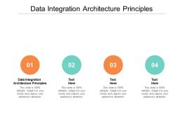 Data Integration Architecture Principles Ppt Powerpoint Presentation Infographic Template Design Templates Cpb