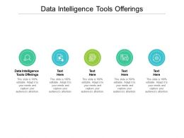 Data Intelligence Tools Offerings Ppt Powerpoint Presentation Icon Portrait Cpb