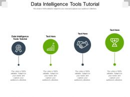 Data Intelligence Tools Tutorial Ppt Powerpoint Presentation Summary Microsoft Cpb