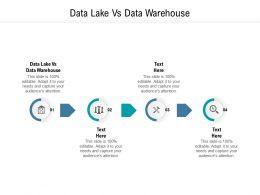 Data Lake Vs Data Warehouse Ppt Powerpoint Presentation Model Infographic Template Cpb