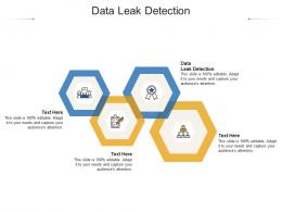 Data Leak Detection Ppt Powerpoint Presentation Gallery Background Images Cpb