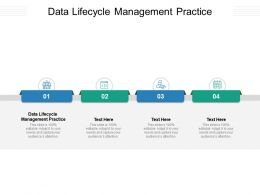 Data Lifecycle Management Practice Ppt Powerpoint Presentation Summary File Formats Cpb