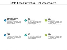 Data Loss Prevention Risk Assessment Ppt Powerpoint Presentation Background Cpb