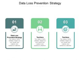 Data Loss Prevention Strategy Ppt Powerpoint Presentation Slides Portrait Cpb